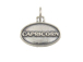 Sterling Silver Capricorn Zodiac Pendant Charm with Jumpring