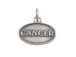 Sterling Silver Cancer Zodiac Pendant Charm with Jumpring