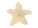 Silk - 16mm Swarovski  Starfish Pendant
